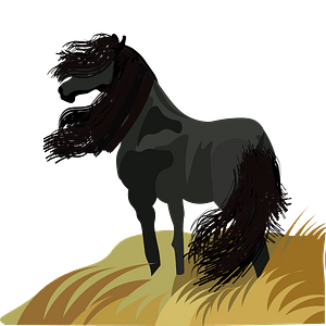 Black Horse on the meadow кліпарт