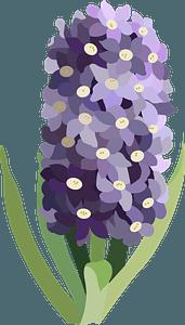 Purple flower clipart