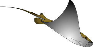 Stingray clipart