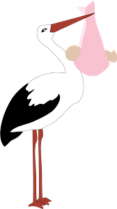 Stork holding a baby girl clipart
