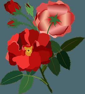Red Rose Vintage clipart