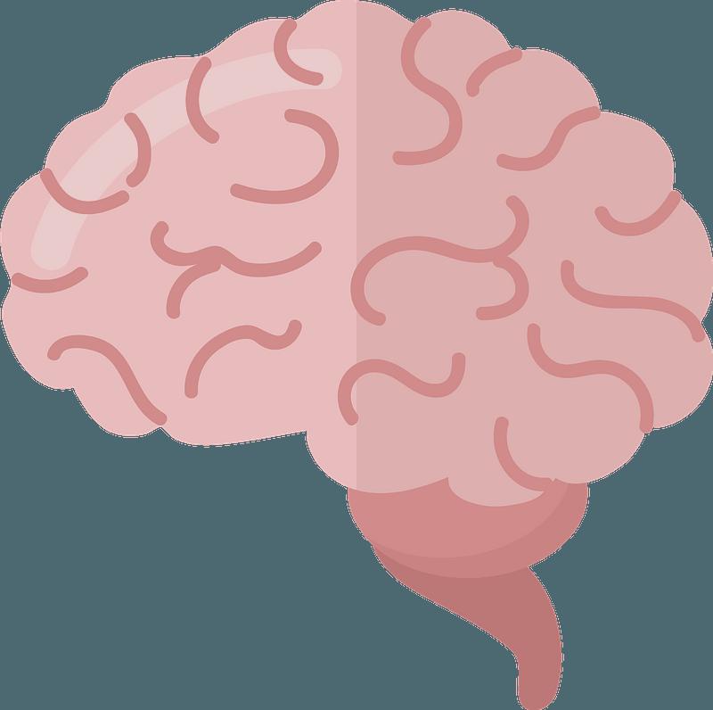brain clipart free download transparent png creazilla creazilla