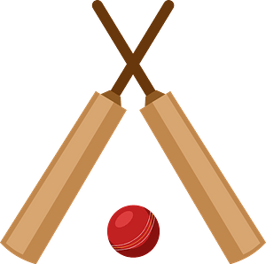 Cricket bats and ball clipart