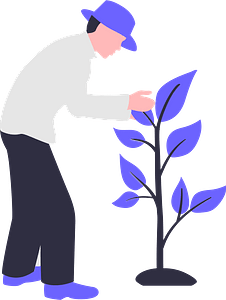 Plant a tree clipart