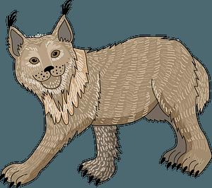 Lynx 클립 아트
