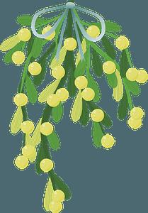 Mistletoe clipart