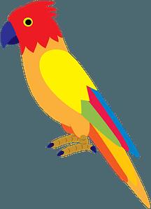Parrot clipart
