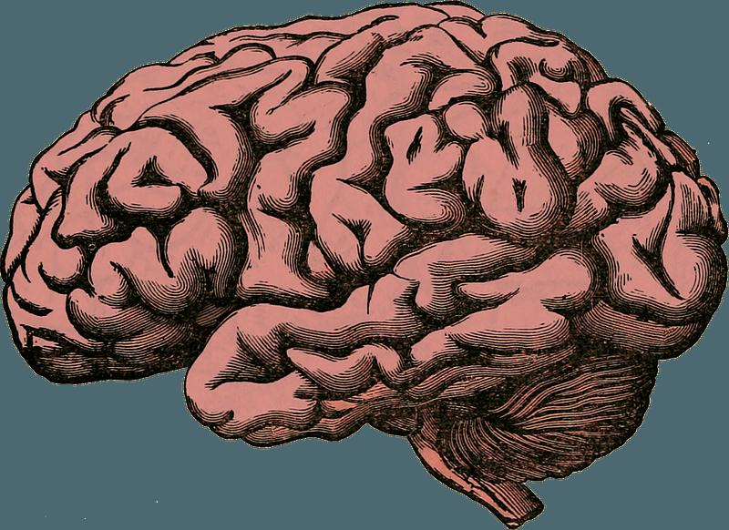 Budú mať počítače niekedy svoje vlastné vedomie?