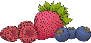 Raspberry, strawberry and blueberry clipart
