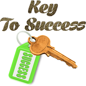Key to success stylized lettering clipart