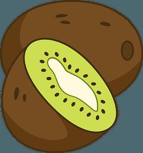 Kiwi clipart