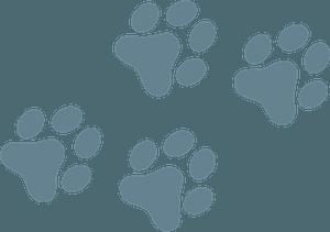 Dog paw prints clipart