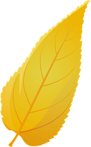 Common hackberry late autumn leaf clipart