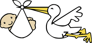Stork carrying baby clipart