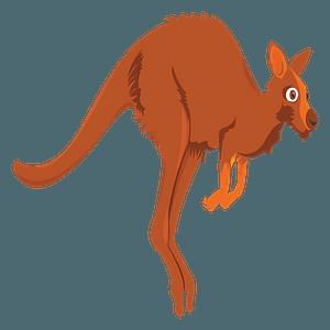 Cartoon kangaroo clipart