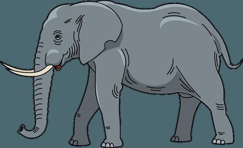 Elephant clipart. Free download transparent .PNG | Creazilla
