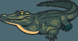 Crocodileのクリップアート