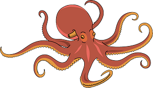 Octopus clipart
