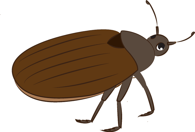 Bug Clipart Free Download Transparent Png Creazilla See more ideas about clip art, cute clipart, butterfly clip art. bug clipart free download transparent