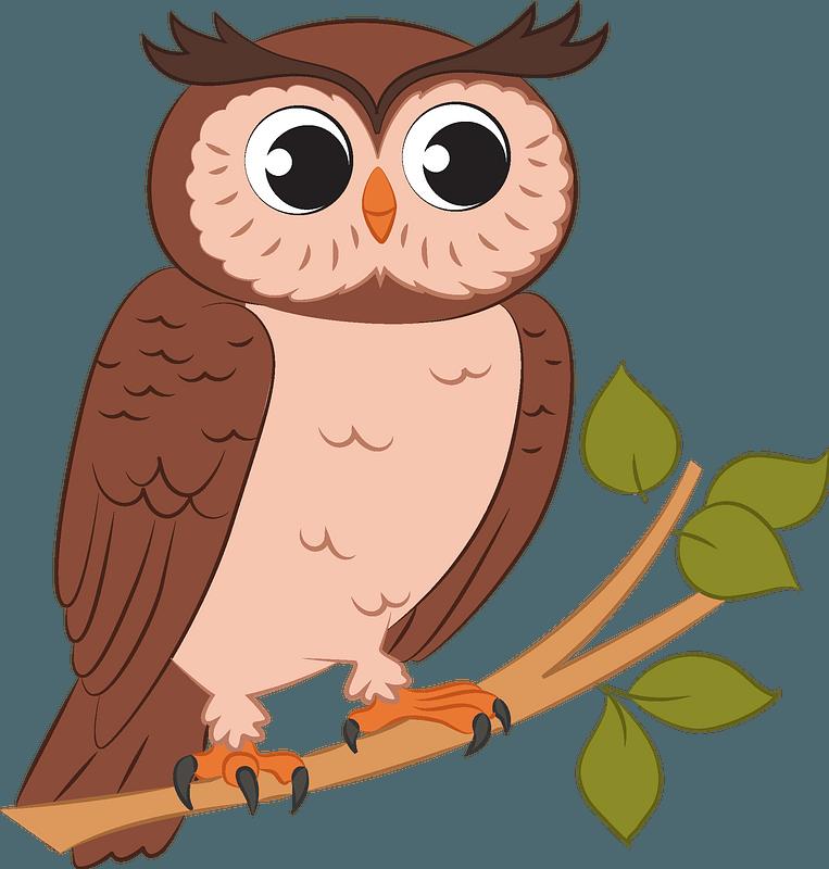 Owl clipart. Free download transparent .PNG | Creazilla