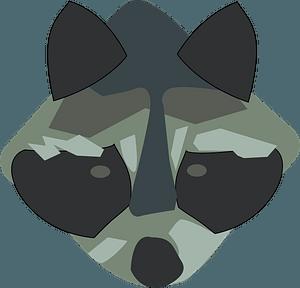Raccoon face clipart