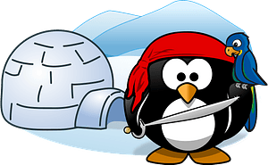 Pirate penguin in Antarctica clipart