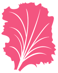 Salat vektor silhuet