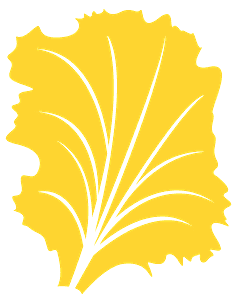 Salat vektor silhouette