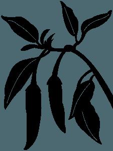Chili Pepper silhouette