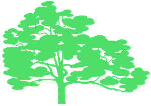 White Oak silhouette