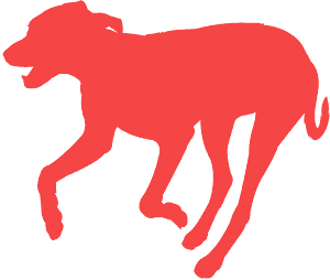 Cachorro Correndo silhueta vetor
