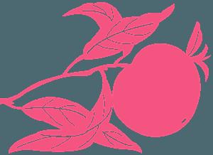 Peach silhouette