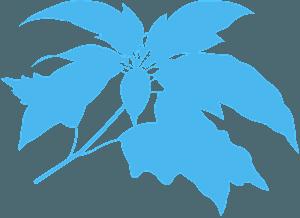 Julestjerne vektor silhuet