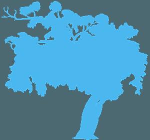 Maulbeerbaum vektor silhouette