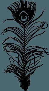 Penna di pavone silhouette