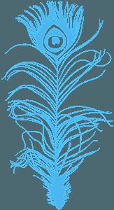 Silueta de Pluma de Pavo Real vector