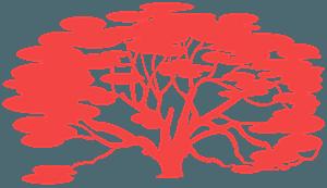 Dąb ostrolistny - sylwetka wektorowa