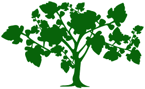 Fig Tree silhouette