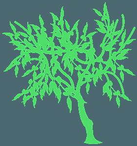 Mandeltræ vektor silhuet
