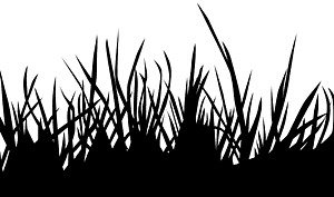 Herbe silhouette