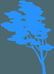 Birch Tree silhouette