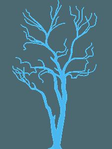 Paljas puu siluetti