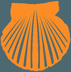 Venusmuschel vektor silhouette