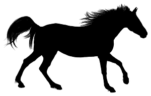 Detailed Horse silhouette