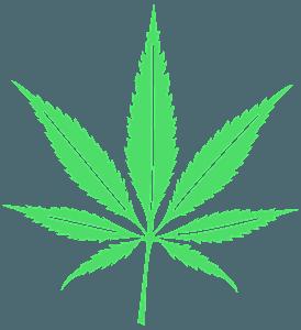 Blad van Cannabis vector silhouet