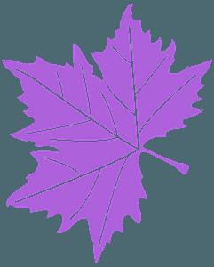 Platanenblatt vektor silhouette