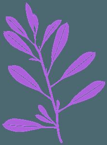 Silueta de Olivo vector