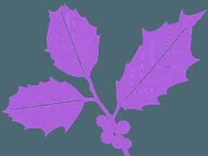 Liść ostrokrzewu - sylwetka wektorowa