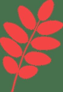 Pagoda tree leaf silhouette