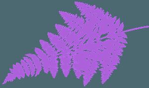 Silueta de Hoja de Helecho vector